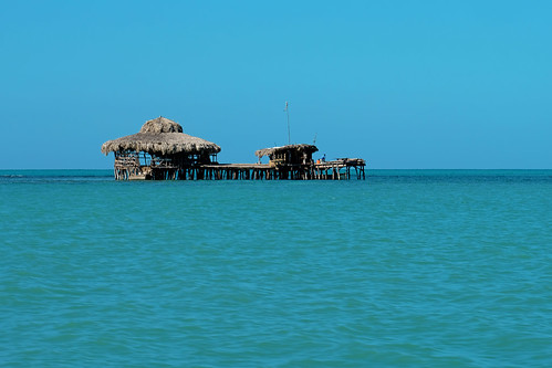 Pelican bar | by ♥iana♥