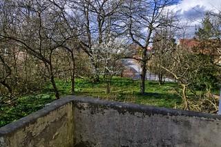 Irisvej 15 (udsigt mod nord fra veranda, ad Magnoliavej mod Carl Jensens Vej og Skovdalsvej) - DSC_4971_2_3_Balancer