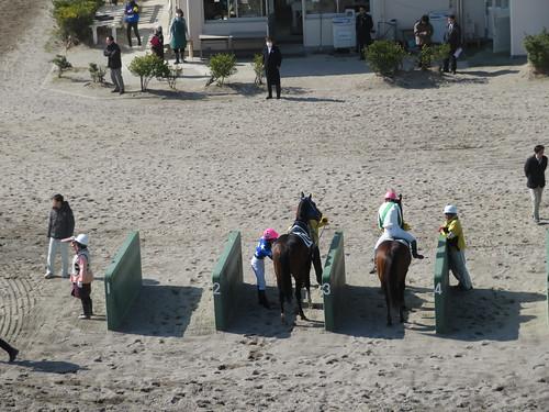 船橋競馬場の枠場に着いた上位入線馬