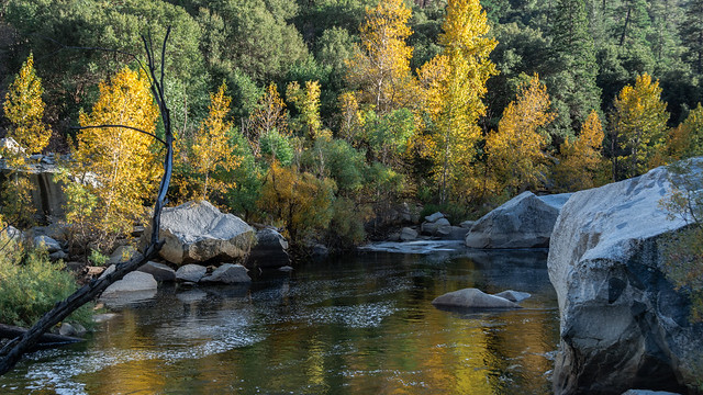 Yosemite National Park . Caifornia /USA   Merced River