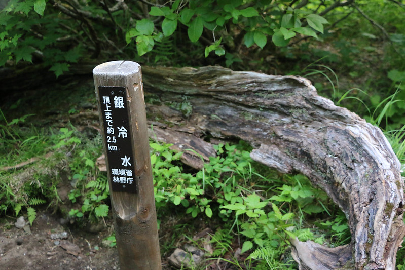 2014-07-21_01706_北海道登山旅行.jpg