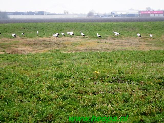 2012-12-10    Lelystad 40 Km  (41)