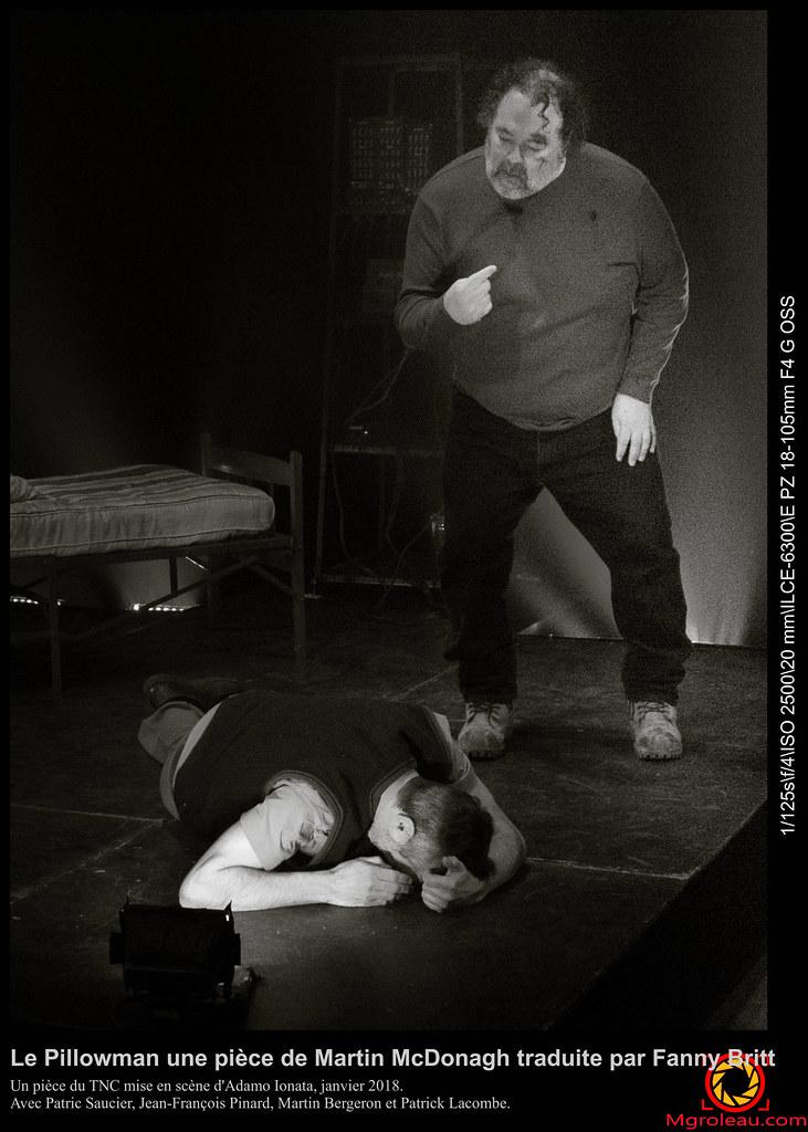 Le Pillowman une pièce de Martin McDonagh traduite par Fanny Britt
