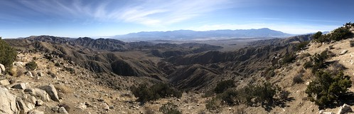 Joshua Tree - Keys view