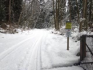 1. snowy road Feb 8.17 | by mossomcreek3