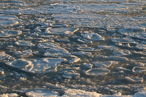 ice canal water sea ocean seaice iceberg flow moving sunset light sunlight winter cold icy wintry season arcticblast arctic northern atlantic