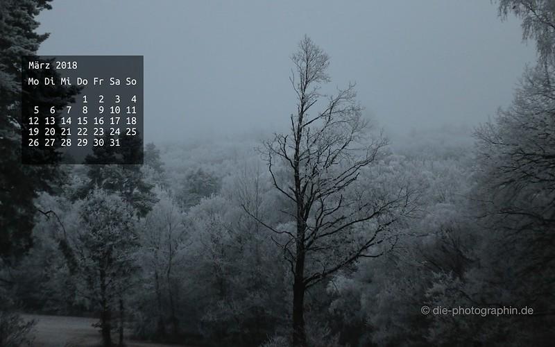 maerz2018-winterwald-wallpaperliebe-diephotographin