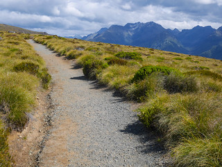 Heading to Luxmore Hut | by snackronym