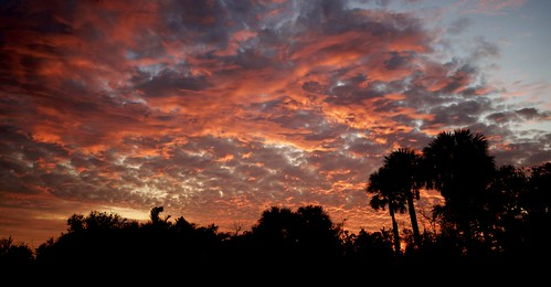 arloguthrie nikond810 nikon1635mm14 panorama sebastianfl indianriverdrive silhouette clouds thecrabhouse