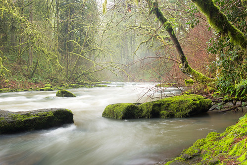 swwashington pnw pacificnorthwest hiking scenery nature landscape outdoors creek river canon sl1 camas moss green trees forest mist longexposure blurredwater rocks scenic