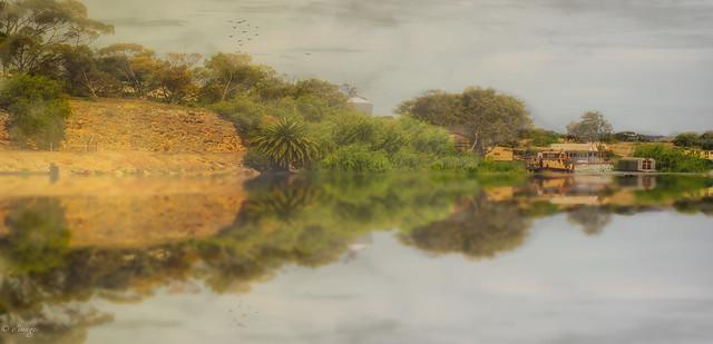 Murray River, SA