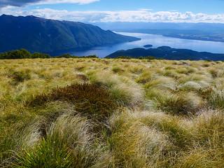 Lake Te Anau | by snackronym