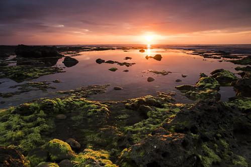 sunrise manzhou 滿州 日出 台灣 台灣風景 東部 屏東 佳樂水 taiwan pingtung 藻類 landscape travel landscapephotography photography