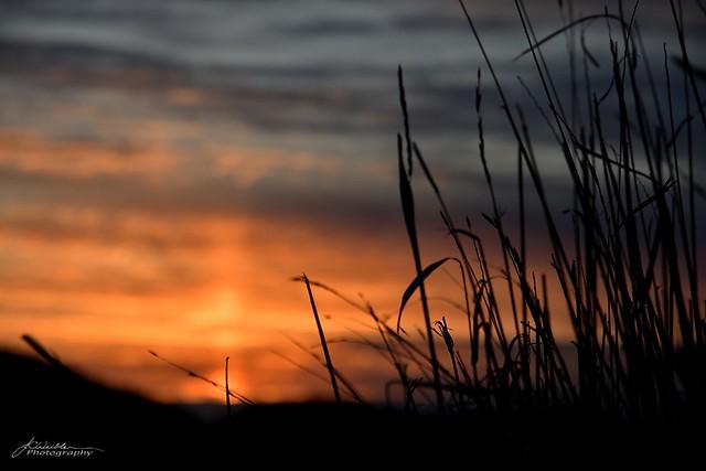 Sunset in Mazo_02_DSC_6178_WM
