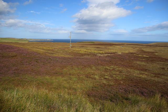 Heathland between Strathy and Melvich
