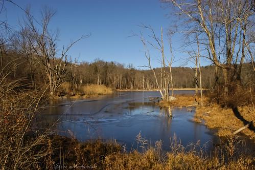 smack53 sterlingforestpark newyork rocklandcounty trees lake pond water winter wintertime winterseason nikon d100 nikond100 scenery landscape