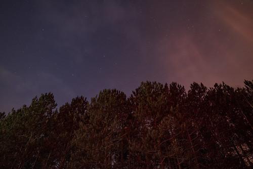 banningstatepark finlayson minnesota dusk sandstone sky stars sunset trees winter unitedstates us
