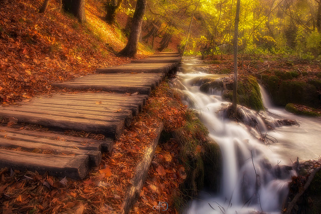 Autumn in Plitvice (31514)