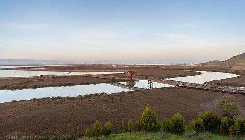newark california unitedstates us don edwards wildlife refuge south san francisco bay
