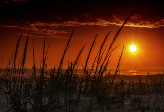 Sunset Over the Dunes | by Charles Patrick Ewing