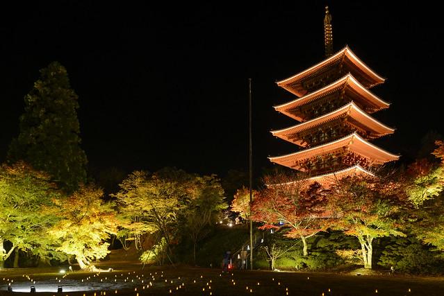 Japan 2017 Autumn_244