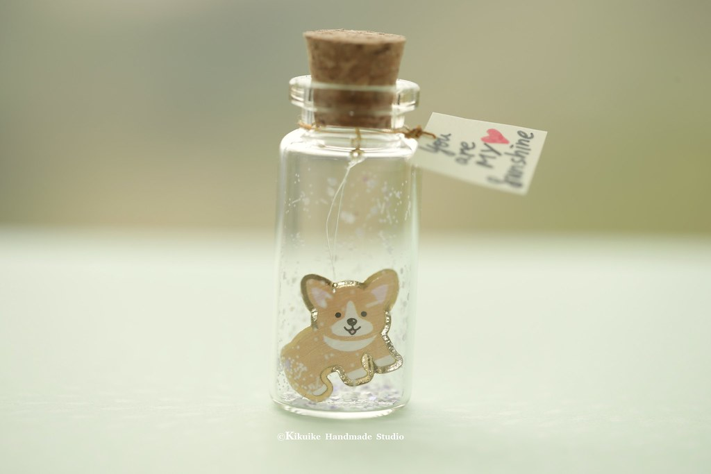 You are my sunshine  message in a bottle