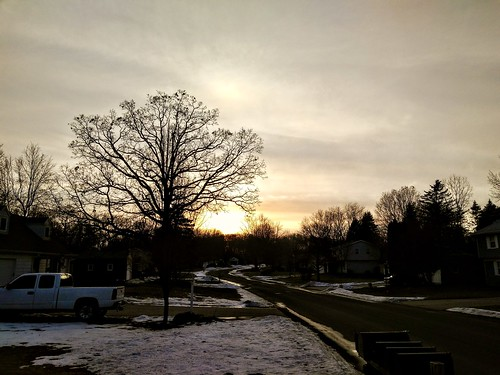 sunset winter trees january 2018 michigan usa sky clouds android