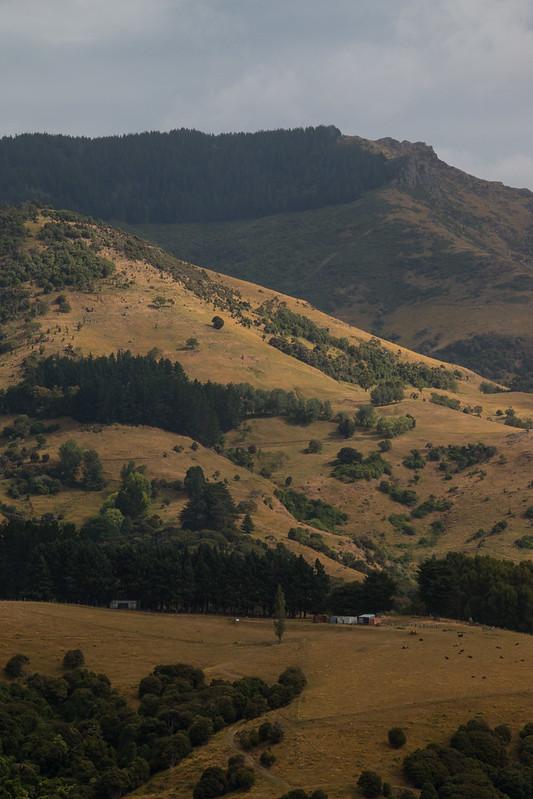 Akaroa-Countryside
