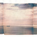 Polaroid emulsion lift triptychs