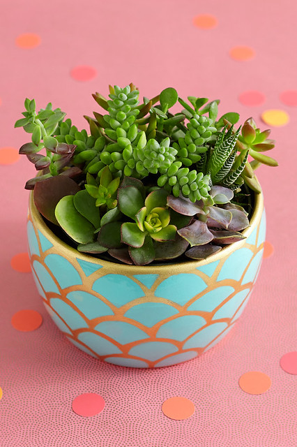 succulent garden potted plant on table in gold scalloped container