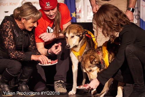 11_POST_Finish&AwardsBanquet_YukonQuest2018_Yklein_3175 | by The Yukon Quest