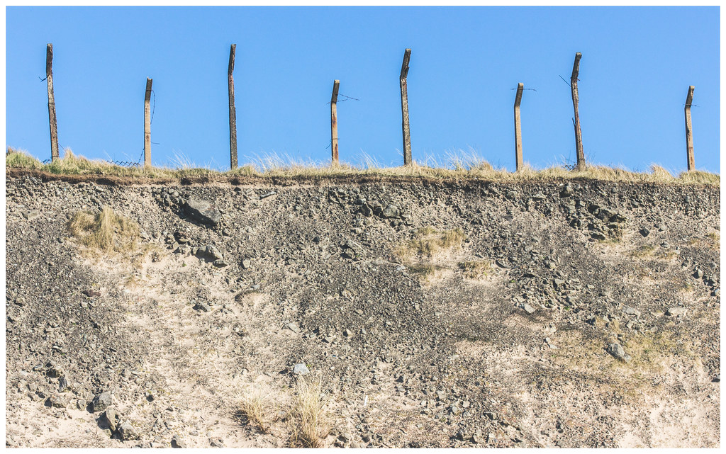 Fenceposts on Dunes, Ardeer
