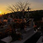 Oaxaca Día Muertos  2017(97)