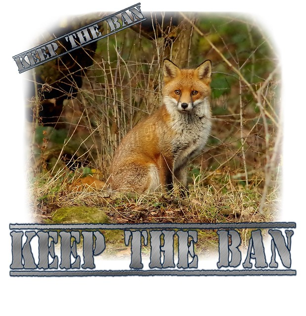 keep the ban