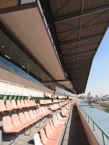 船橋競馬場のスタンド4階の屋外席