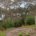 PB020037-Panorama.jpg
