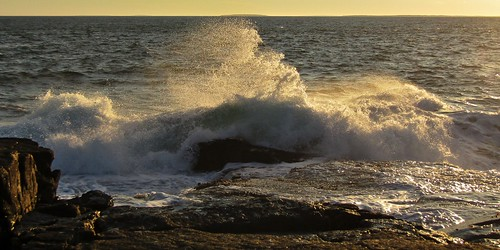 schoodic point ocean acadia national park maine nature waves water