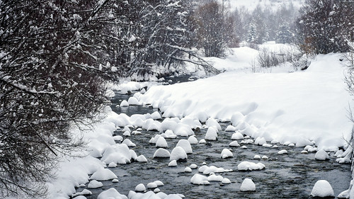 neige ruisseau arbres rochers hautesalpes massifdesecrins vallouise