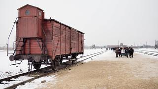 Birkenau Auschwitz transport wagon