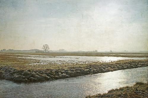 noroad nowater nosnow ice frozen ijs ijzig bevroren polder kelskphotography vockestaertpolder delft delfland zuidholland holland nederland netherlands textuur texture