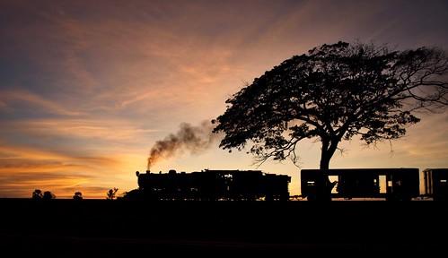 burma railways metre gauge yd 282 967 asia railway railroad rail train sunset steam engine locomotive myanmar tree gassteam farrail trains narrow zinkyaik mon state january 2018 theinzeik vulcan foundry export