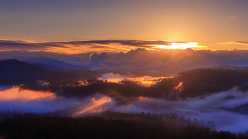 fog mist dawn sunrise light great smoky mountains national park tennessee foothills parkway