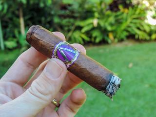 La Barba - Purple 06