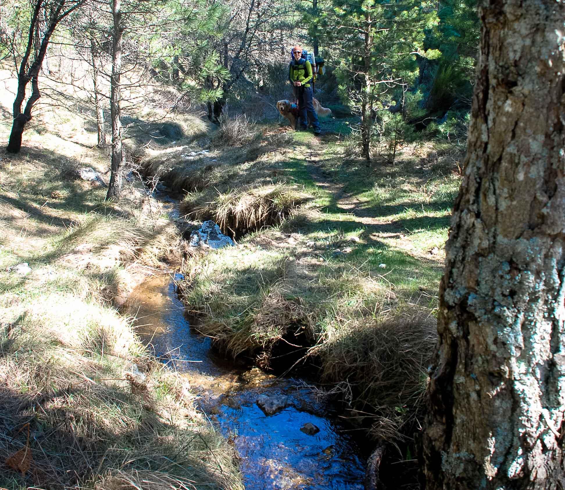 Arroyo bajo la Fuente del Pino de los Muchachos