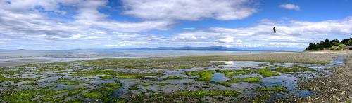 britishcolumbia canada qualicumbeach landscape vancouverisland shore shoreline beach straitofgeorgia clouds sky