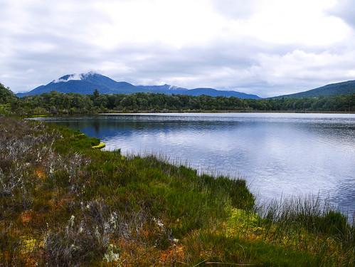 Wetlands | by snackronym