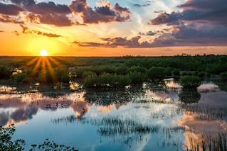 Everglades Sunset Reflected | by Charles Patrick Ewing