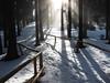 Závěrečná pasáž výstupu na Boubín, foto: Petr Nejedlý