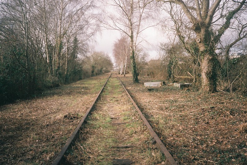 The disused railway, from Portishead to Pill