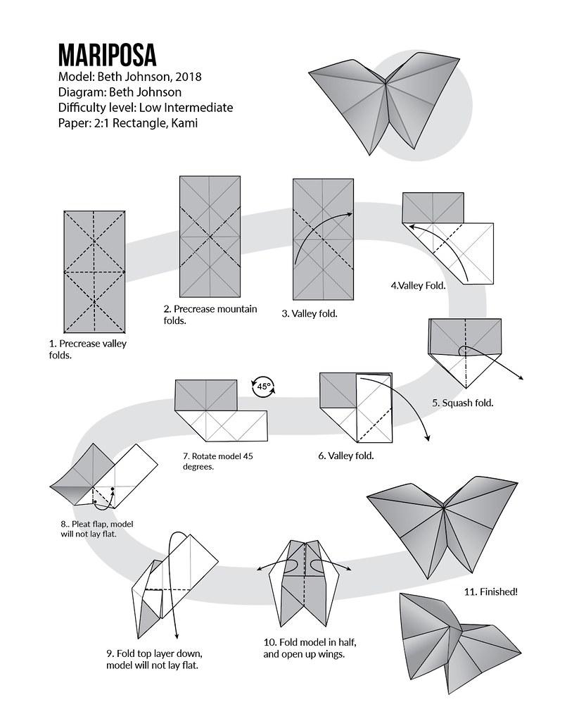 Butterfly Diagram  Enjoy